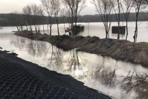 В Брянск благоустроят территорию возле озера Мутное