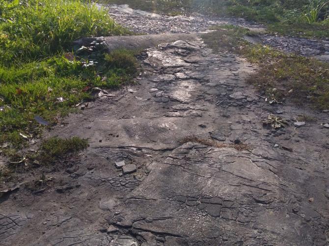 Жители Карачева просят отремонтировать опасную дорогу