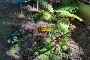 В Брянске на кладбище воры разорили могилу