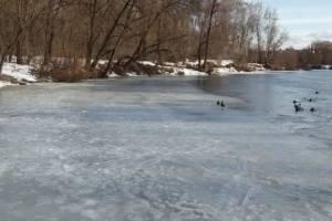 В Брянске 11-летний мальчик провалился под лед Десны