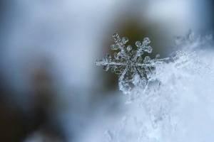 В Брянской области похолодает до -5