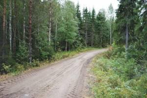 В Трубчевском районе два населенных пункта оказались отрезаны от цивилизации