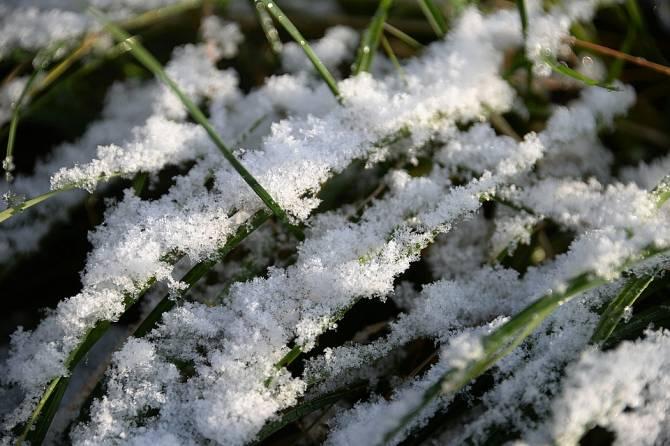 В Брянской области 29 марта ожидается мокрый снег