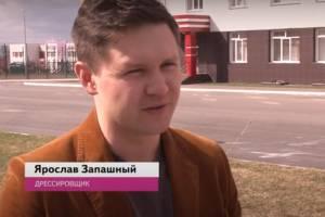 Саженец Ярослава Запашного украсил территорию школы № 71 в Брянске