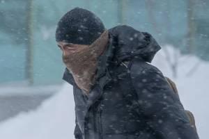 В первую пятницу февраля на Брянщину обрушится сильный ветер
