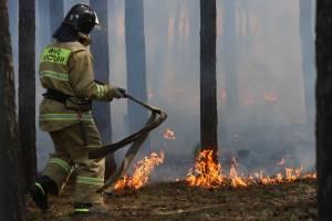 За сутки в Брянской области произошло девять пожаров