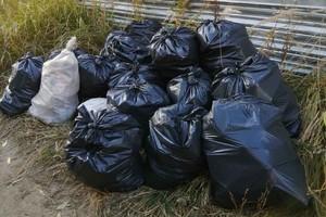 Брянские активисты собрали 15 мешков мусора в Володарском районе