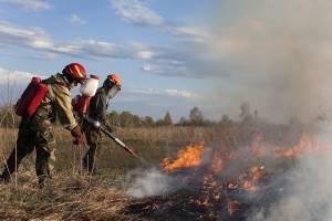 Клетнянские фермеры забыли о пожарной безопасности на своих землях