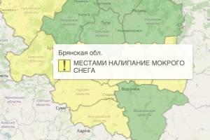 На Брянщине из-за снега объявили «желтый» уровень опасности