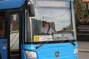 «Коллапс не произошёл»: в Брянске заметили нашествие автобусов