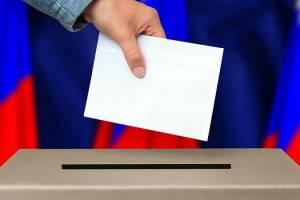 Брянцы смогут выбрать губернатора на цифровых участках в Москве