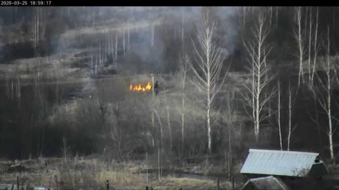 В Карачевском районе заметили поджигателя сухой травы