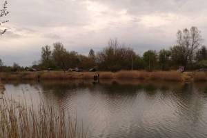 Жителей Новозыбкова призвали сохранять чистоту на местном озере