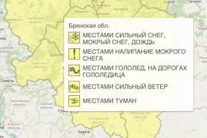 На Брянщине из-за тумана и гололёда объявили жёлтый уровень опасности