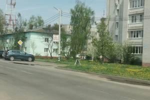 В Супонево водителей предупредили о фотоловушке на улице Фрунзе