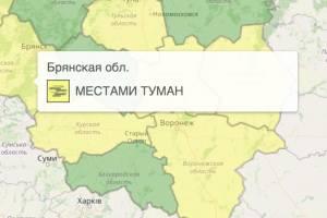 На Брянщине из-за тумана объявили желтый уровень опасности