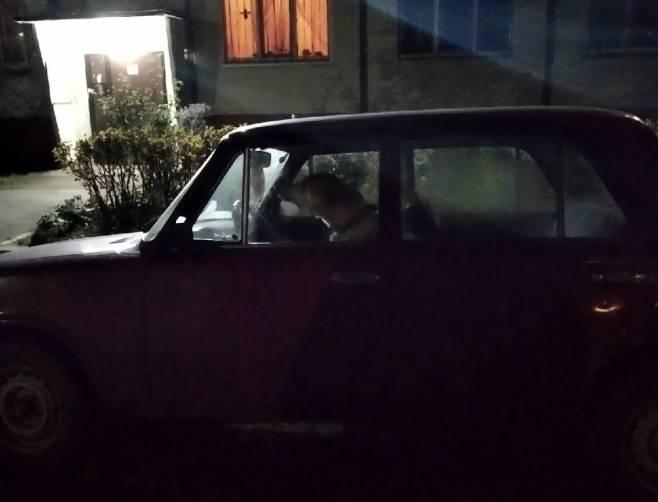 В Брянске автомобилист запер пса в старой легковушке