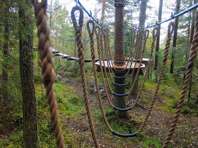В Фокинском районе Брянска появится веревочный парк