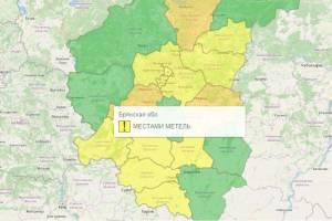 В Брянске из-за метели объявили желтый уровень погодной опасности