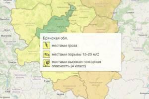 На Брянщине из-за грозы объявили «жёлтый» уровень опасности