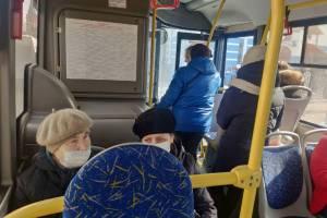 В Брянске начали поиск водителей для синих и белых автобусов