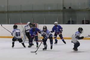 Юные спортсмены из Клинцов победили в турнире по хоккею