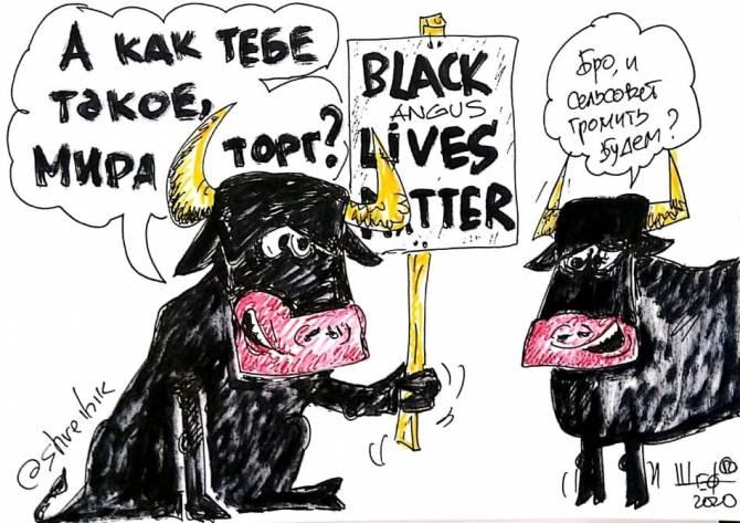 Брянский карикатурист связал погромы в США с «Мираторгом»