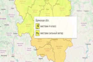 В Брянской области объявили «желтый» уровень погодной опасности