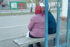 Брянские пенсионеры пожаловались на низкие лавочки на остановке в Бежице