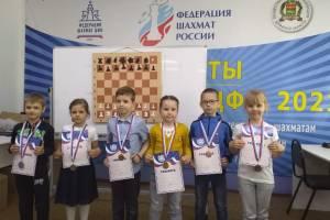 Юные брянские шахматисты сразились в первенстве области