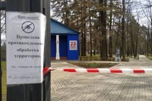 В брянском поселке Локоть обработали парк от клещей