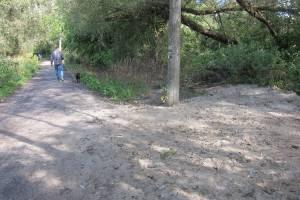 В Брянске работник водоканала ответит за затопленный нечистотами лес