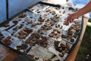 Под Навлей Брянской области нашли древнее поселение человека