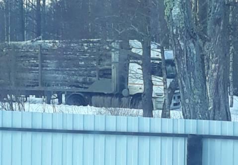 Жители поселка Бытошь пожаловались на разрушающие дороги лесовозы
