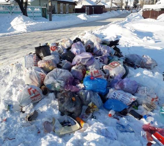 Брянцев пообещали избавить от мусорных свалок установкой контейнера