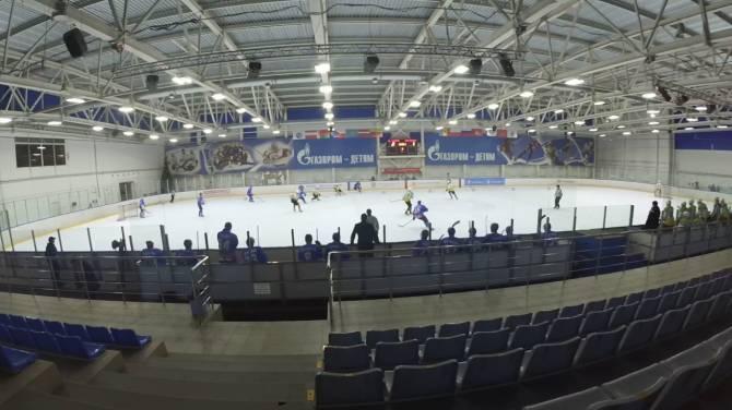 Брянские хоккеисты победили гостей из Белгорода