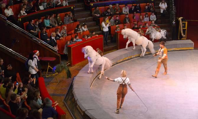 В Брянске пожаловались на принудительные походы школьников в театр и цирк