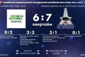 Брянские хоккеисты обыграли в гостях «ЭкоНиву-Бобров»
