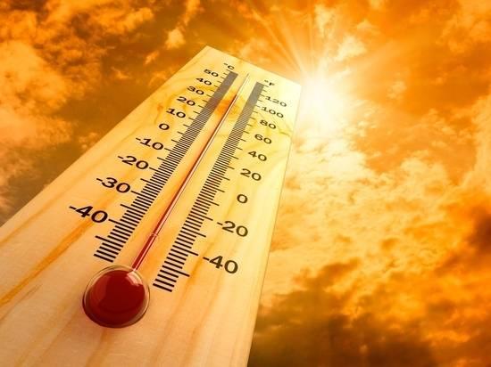 На Брянщину в понедельник придёт 28-градусная жара