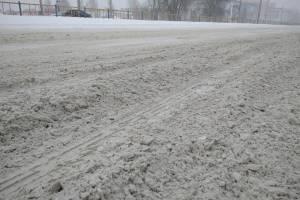 В Брянске морозы и снегопады задержатся еще на две недели