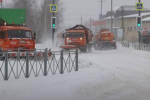 Частные компании присоединились к расчистке Бежицы от снега