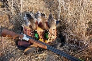 На Брянщине утвердили нормы добычи охотничьих ресурсов