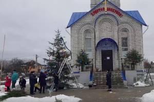 В Белых Берегах у храма нарядили рождественскую ель