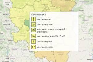 На Брянщине из-за жары продлили жёлтый уровень опасности