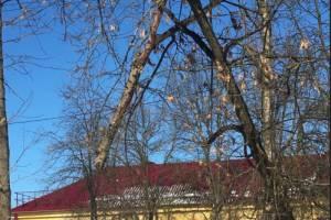 В Брянске над жителями дома на проспекте Московском нависла опасность