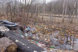 В Брянске начали убирать гигантскую свалку возле школы №57