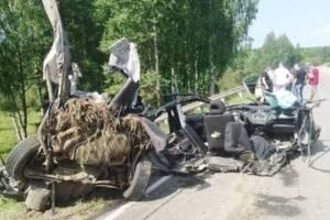 Под Людиново в жутком ДТП погиб 36-летний брянец