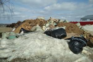 Брянцы на грузовом такси вывалили мусор на улице в Супонево