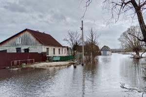 Брянский поселок Радица-Крыловка начал превращаться в Атлантиду