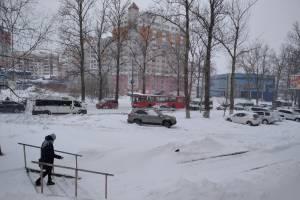 В Брянске застрявший на скользкой дороге троллейбус привел к пробке